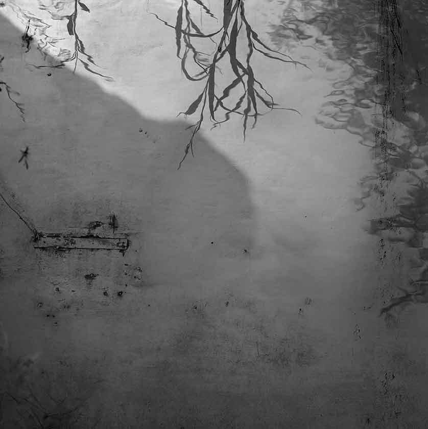 2009 > Untitled